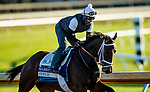 November 4, 2020: Speech, trained by trainer Michael W. McCarthy, exercises in preparation for the Breeders' Cup Filly & Mare Sprint at Keeneland Racetrack in Lexington, Kentucky on November 4, 2020. Alex Evers/Eclipse Sportswire/Breeders Cup
