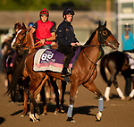 OCT 29: Breeders' Cup Juvenile Fillies Turf entrant Living In The Past, trained by Karl Burke, at Santa Anita Park in Arcadia, California on Oct 29, 2019. Evers/Eclipse Sportswire/Breeders' Cup