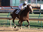 General Election and Corey Lanerie win the 4th race at Churchill Downs.  November 24, 2012.