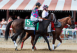 Finley'sluckycharm in the post parade as Marley's Freedom (no. 7) wins the Ketel One Ballerina  Stakes (Grade 1), Aug. 25, 2018 at the Saratoga Race Course, Saratoga Springs, NY.  Ridden by  Mike Smith, and trained by Bob Baffert, Marley's Freedom finished 3 3/4  lengths in front of Still There (No. 3).  (Bruce Dudek/Eclipse Sportswire)
