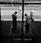 BEACON, NEW YORK:  Prisoners take their puppies to a prison courtyard for training at Fishkill Correctional Facility. The Puppies Behind Bars (PPB) program works with prison inmates in New York, New Jersey, and Connecticut to train service dogs, including ones who help injured soldiers and those suffering from post-traumatic stress. Fishkill Correctional Facility is a medium security prison in New York with 22 men in the puppy program.