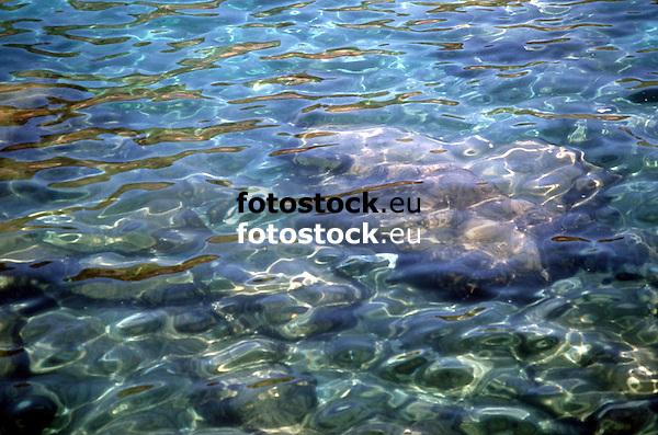 Stones at the ground of the sea<br /> <br /> Piedras en el fondo del mar<br /> <br /> Steine auf dem Meeresgrund<br /> <br /> 1963 x 1298 px<br /> Original: 35 mm slide transparency