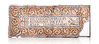 """Fifth century Eastern Roman Byzantine  Christian funerary mosaic dedicated to Leontia.  The Constantinian monogram depicting the Christian Chi-Rho symbol used by the Roman emperor Constantine I as part of his military standard (vexillum).  The inscription in the cartouche reads """" Leontia in peace and harmony with God, entered into eternal life on the Sixth Ides of October"""". Two birds and cut Roses occupy the rest of the mosaic. <br /> <br /> Excavated from Demna Parish Church ruins between the 4th and 5th columns of the right aisle. The Bardo National Museum, Tunis, Tunisia.  Against a white background."""