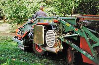 Ramassage mécanisé des noix.Station exprimentale de Creysse.Noix du Périgord.46-Lot.France