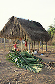 Rio Branco, Brazil. Squatters - 'Posseiros' - building a thatched hut. Acre State.