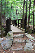 Footbridge along Bearcamp River Trail, near Beede Falls, in Sandwich, New Hampshire USA during the summer months.