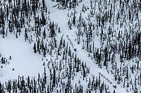 Kristy Berington leads her sister Anna on the trail between  McGrath and Takotna during Iditarod 2016.  Alaska.  March 09, 2016.  <br /> <br /> Photo by Jeff Schultz (C) 2016  ALL RIGHTS RESERVED