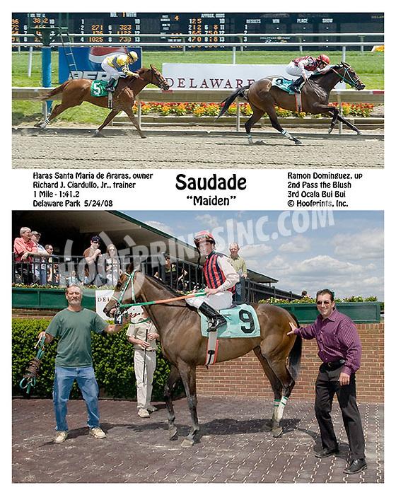 Saudade winning at Delaware Park on 5/24/08