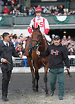 Balance the Books and Julien Leparoux win the 22nd running of the Bourbon Grade 3 $150,000 on the turf at Keeneland racecourse for owner Klaravich Stables and William Lawrence and trainer Chad Brown.  October 7, 2012.