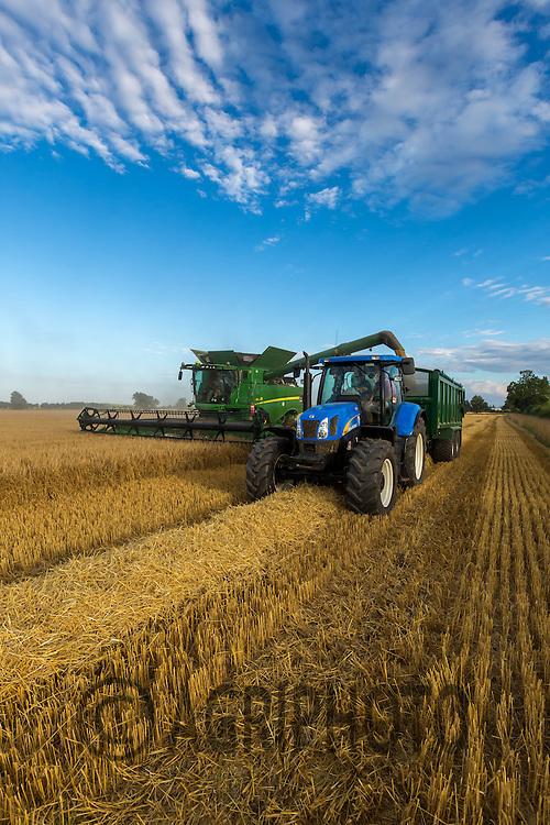 Harvesting Barley in the evening sunlight<br /> Picture Tim Scrivener 07850 303986