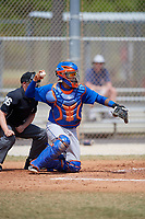 New York Mets Catcher Ali Sanchez (20) during a minor league Spring Training game against the St. Louis Cardinals on March 28, 2017 at the Roger Dean Stadium Complex in Jupiter, Florida.  (Mike Janes/Four Seam Images)