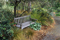 Bench in drought tolerant mixed border with ornamental grasses