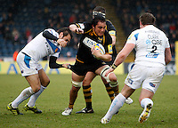Photo: Richard Lane/Richard Lane Photography. London Wasps v Exeter Chiefs. 12/02/2012. Wasps' Jonathan Poff attacks.