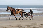 August 14, 2021, Deauville (France) - Trotter training at the beach in Deauville. [Copyright (c) Sandra Scherning/Eclipse Sportswire)]