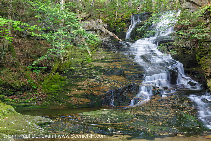 Tama Fall on Snyder Brook in Randolph, New Hampshire during the summer months. This waterfall is located along the Fallsway Trail and is part of the Snyder Brook Scenic Area.
