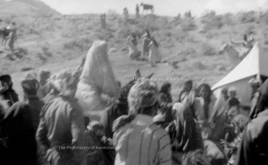 Iraq 1972 .Near the border of Iran, the bride, Chlou Mill on a horse with people around her arriving to meet the groom, Mohammed Agha .Irak 1972 .Pres de la frontiere iranienne,la mariee, Chlou Mill, sur son cheval avec une foule autour d'elle, arrive pour rencontrer le marie, Mohammed Agha