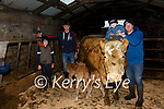 Eoghan O'Connor from Emlaghpeste, Portmagee on the right with his Charlois cow of 10 years who had triplets a week ago pictured here l-r; Darragh, Kevin, Paddy Jnr & Eoghan O'Connor.