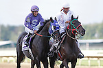 September 1, 2014:  Bold Thunder, Paco Lopez up, joins the post parade for the grade 3 Turf Monster Handicap at Parx Racing in Bensalem, PA. ©Joan Fairman Kanes/ESW/CSM