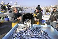 - Marsiglia, mercato del pesce al Porto Vecchio<br /> <br /> - Marseille, the fish market in the Old Port