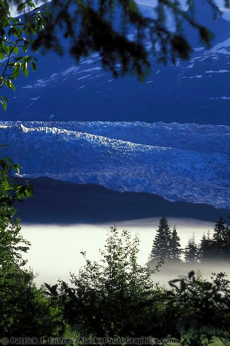 Mendenhall Glacier terminus, Juneau, Alaska. The Mendenhall Glacier formed about 3,000 years ago.
