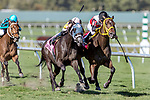 HALLANDALE BEACH, FL - FEB 17:Conquest Sandman #1 trained by Juan Carlos Abarrio with Jose Lezcano in the irons wins the $60,000 Old Man Eloquent Claiming Stakes at Gulfstream Park on February 17, 2018 in Hallandale Beach, Florida. (Photo by Bob Aaron/Eclipse Sportswire/Getty Images)