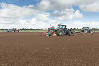 15-10-2021 Ploughing land drilling and following a cauliflower crop in the Lincolnshire Fens.<br />  ©Tim Scrivener Photographer 07850 303986<br />      ....Covering Agriculture In The UK....