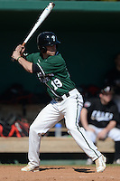 Plymouth State Panthers Luke Mancini (19) during the first game of a doubleheader against the Edgewood Eagles on March 17, 2015 at Terry Park in Fort Myers, Florida.  Edgewood defeated Plymouth State 12-3.  (Mike Janes/Four Seam Images)