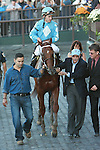 10 02 2010: Haynesfield & Ramon Dominguez win the Grade I Jockey Club Gold Cup by 7 lengths, at 1 1/4, 3-year olds & up, Belmont Park, Elmont, NY. Trainer Steve Asmussen.  Owners Turtle Bird Stable