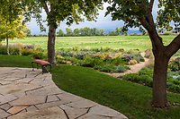 Patio under trees to small backyard lawn transition to prairie garden; Scripter garden, Colorado; design Lauren Springer Ogden