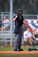 Home plate umpire Mike Savakinas calls a strike during a game between the Eastern Michigan Eagles and Dartmouth Big Green on February 25, 2017 at North Charlotte Regional Park in Port Charlotte, Florida.  Dartmouth defeated Eastern Michigan 8-4.  (Mike Janes/Four Seam Images)