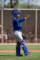 Los Angeles Dodgers catcher Jair Camargo (25) during an Instructional League game against the Chicago White Sox on September 30, 2017 at Camelback Ranch in Glendale, Arizona. (Zachary Lucy/Four Seam Images)