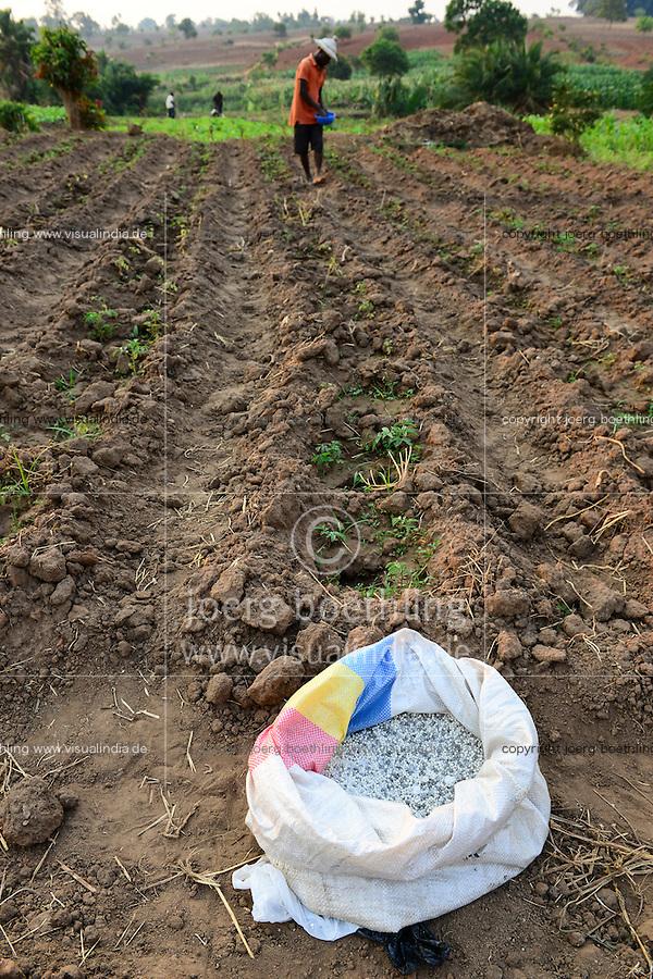 MALAWI, Thyolo, village Samuti, Farmer applies synthetic fertilizer in vegetable field, the Malawi government has subsidized synthetic fertlizer under Farm Input Subsidy Programme FISP to increase the yields / MALAWI, Thyolo, Dorf Samuti, Farmer bringen synthetische Duenger aus, die malawische Regierung hat mit einem Düngerprogramm synthetische Dünger über Jahre hoch subventioniert um Ertraege zu steigern