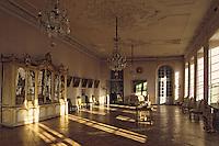 Europe/France/Auverne/63/Puy-de-Dôme/Ravel: Le Château - Grande Galerie