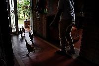 ARMENIA - COLOMBIA, 24-05-2021: La producción en la avícola de Jenny Gallego solo se ha reducido en un 30%, las buenas condiciones del lugar y la alimentación han permitido que las gallinas continúen poniendo huevos, las cubetas de huevos las vende por encargo en el municipio. A más de un mes del inicio del Paro Nacional, los campesinos han tenido que reinventar la forma para mantener sus cultivos y criaderos activos para minimizar las pérdidas por los bloqueos que aún se mantienen en las vías. Según cifras del Ministerio de Hacienda, las pérdidas diarias están en un monto de $480.000 millones de pesos colombianos, lo cual sumando la totalidad de los días del Paro Nacional, suman un total de $10,8 billones de pesos colombianos./ Production in Jenny Gallego's poultry farm has only been reduced by 30%, the good conditions of the place and the feed have allowed the hens to continue laying eggs, and she sells the buckets of eggs by order in the municipality. More than a month after the beginning of the National Strike, farmers have had to reinvent the way to keep their crops and hatcheries active in order to minimize losses due to the roadblocks that are still in place. According to figures from the Ministry of Finance, the daily losses are in the amount of $480,000 million Colombian pesos, which adding all the days of the National Strike, add up to a total of $10.8 billion Colombian pesos. Photo: VizzorImage / Santiago Castro / Cont