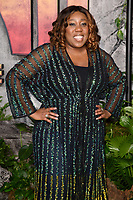 "Chizzy Akudolu<br /> arriving for the ""Jumanji: Welcome to the Jungle"" premiere at the Vue West End, Leicester Square, London<br /> <br /> <br /> ©Ash Knotek  D3358  07/12/2017"