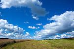 Europa, DEU, Deutschland, Baden-Wuerttemberg, Odenwald, Mosbach, Agrarlandschaft. Sommer, Wolken, Cumuluswolken, Kategorien und Themen, Natur, Umwelt, Landschaft, Jahreszeiten, Stimmungen, Landschaftsfotografie, Landschaften, Landschaftsphoto, Landschaftsphotographie, Wetter, Himmel, Wolken, Wolkenkunde, Wetterbeobachtung, Wetterelemente, Wetterlage, Wetterkunde, Witterung, Witterungsbedingungen, Wettererscheinungen, Meteorologie, Bauernregeln, Wettervorhersage, Wolkenfotografie, Wetterphaenomene, Wolkenklassifikation, Wolkenbilder, Wolkenfoto....[Fuer die Nutzung gelten die jeweils gueltigen Allgemeinen Liefer-und Geschaeftsbedingungen. Nutzung nur gegen Verwendungsmeldung und Nachweis. Download der AGB unter http://www.image-box.com oder werden auf Anfrage zugesendet. Freigabe ist vorher erforderlich. Jede Nutzung des Fotos ist honorarpflichtig gemaess derzeit gueltiger MFM Liste - Kontakt, Uwe Schmid-Fotografie, Duisburg, Tel. (+49).2065.677997, archiv@image-box.com, www.image-box.com]