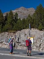 Wanderer, Ofenpass - Pas dal Fuorn, Val Müstair-Münstertal, Engadin, Graubünden, Schweiz, Europa<br /> Hiker at Ofenpass - Pas dal Fuorn,, Val Müstair-Münster Valley, Engadine, Grisons, Switzerland