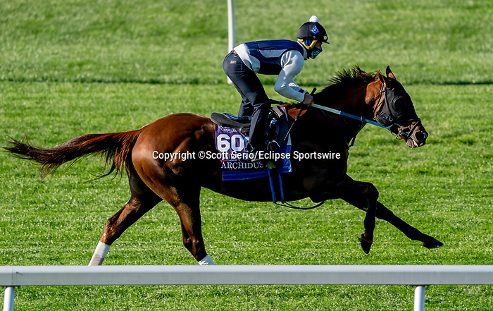November 1, 2020: Archidust, trained by trainer Steven M. Asmussen, exercises in preparation for the Breeders' Cup Turf Sprint at Keeneland Racetrack in Lexington, Kentucky on November 1, 2020. Scott Serio/Eclipse Sportswire/Breeders Cup /CSM