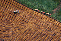 Aerial  of farm trucks and combine in wheat field