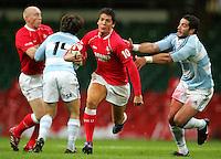 070818 International Rugby - Wales v Argentina