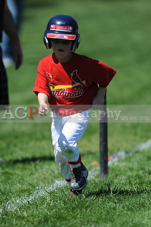 The T-Ball Cardinals of Pleasanton National Little League  March 28, 2009.