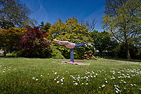 Pictured: A young woman practices yoga at the Botanical Gardens of Singleton Park  in Swansea, Wales, UK. Monday 31 May 2021<br /> Re: Sunshine and high temperatures enjoyed in most parts of the country, during the Bank Holiday Weekend.