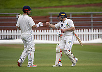Hamish Rutherford and Dale Phillips during day three of the Plunket Shield match between the Wellington Firebirds and Otago Volts at Basin Reserve in Wellington, New Zealand on Saturday, 7 November 2020. Photo: Dave Lintott / lintottphoto.co.nz