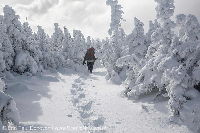 Hiker traveling south on the Appalachian Trail (Carter-Moriah Trail) near the summit of Carter Dome in Bean's Purchase in the New Hampshire White Mountains during the winter months.