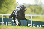 September 11, 2021: Princess Grace #2, ridden by jockey to win the Grade 3 Kentucky Downs Ladies Turf Stakes on the turf at Kentucky Downs Racecourse in Franklin, K.Y. on September 11th, 2021. Wendy Wooley/Eclipse Sportswire/CSM