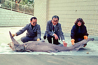 Dr. Eugenie Clark ( right ) with goblin shark specimen, Mitsukurina owstoni, Japan