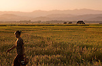 A Laotian woman walks in front of rice fields in Luang Namtha on Novemeber 9, 2009.   (Photo by Khampha Bouaphanh)