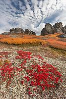 Weathered granit tors in the Bering Land Bridge National Preserve, Seward Peninsula, Alaska.