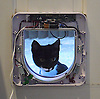 Cat flap installation.<br />