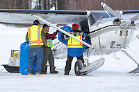 A group of volunteers help load straw into an Iditarod Air Force plane at the Willow, Alaska airport during the Food Flyout on Saturday, February 20, 2016.  Iditarod 2016